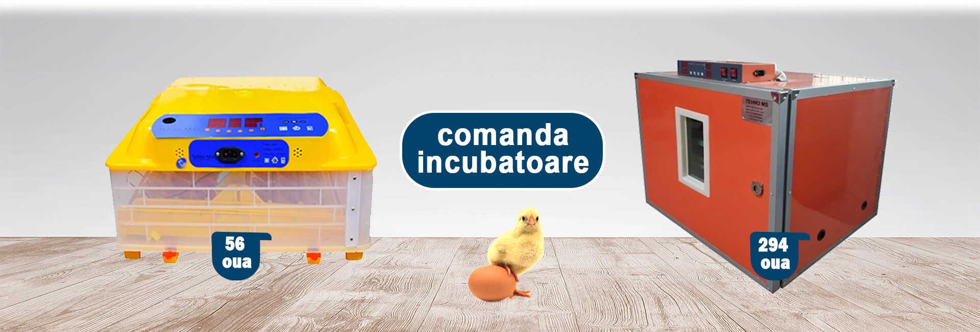 incubatoare automate